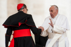 07/03/2019  : Card. Philippe BARBARIN a envoyé sa démission au pape